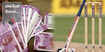 Cricket Betting