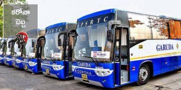 Garuda Buses