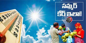సమ్మర్ కేర్ - www.theleonews.com