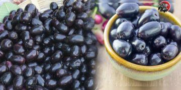 Amazing Health Benefits Of Jamun Fruits