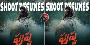 Pushpa Movie Shoot Resumes