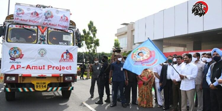 Amul Believed In Jagan And Fell Into Trouble